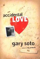 Accidental Love PDF