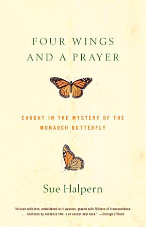 Four Wings and a Prayer PDF