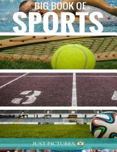 Big Book of Sports