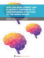 How Can Development and Plasticity Contribute to Understanding Evolution of the Human Brain?