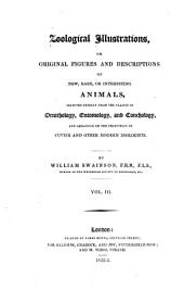 Zoological Illustrations, Or Original Figures and Descriptions of New, Rare Or Interesting Animals: Selected Chiefly from the Classes of Ornithology, Entomology and Conchology and Arranged on the Principles of Cuvier and Other Modern Zoologists, Volume 1