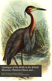 Catalogue of the Birds in the British Museum: Plataleœ (ibises and spoonbills) and Herodiones (herons and storks) by R.B. Sharpe. Steganopodes (cormorants, gannets, frigate-birds, tropic-birds, and pelicans) Pygopodes (divers and grebes) Alcœ (auks) and Impennes (penguins) by W.R. Ogilvie-Grant