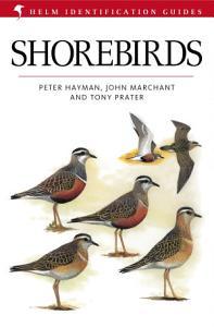Shorebirds Book
