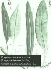 Cryptogames vasculaires (fougères, lycopodiacées, hydroptéridées, equisétacées) du Brésil: Matériaux pour une flore générale de ce pays, Volume2