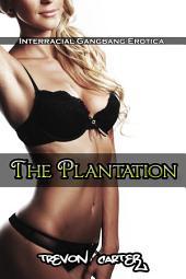 The Plantation (Interracial Erotica)