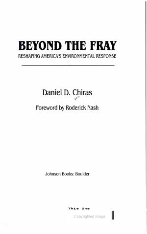 Beyond the Fray PDF
