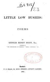 Little Low Bushes: Poems