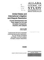 United States and International Litigation and Dispute Resolution PDF