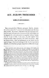 2 notes sur la question relative aux Aegilops triticodes et speltoeformis