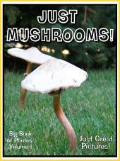 Just Mushrooms! vol. 1: Big Book of Mushroom Plants Photographs & Pictures