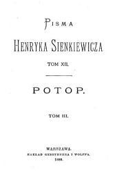 Potop: powieść historyczna, Tom 3