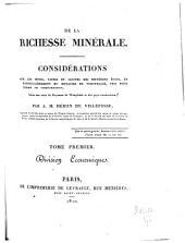 De la richesse minérale: Division economique