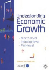 Understanding Economic Growth A Macro-level, Industry-level, and Firm-level Perspective: A Macro-level, Industry-level, and Firm-level Perspective