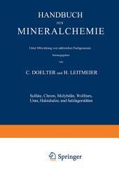 Sulfate, Chrom, Molybdän, Wolfram, Uran, Haloidsalze und Salzlagerstätten: Band IV Zweiter Teil