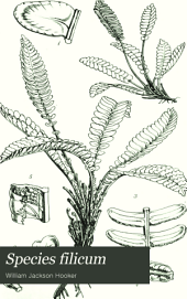 Species Filicum: Being Descriptions of the Known Ferns, Particularly of Such as Exist in the Author's Herbarium, Or are with Sufficient Accuracy Described in Works to which He Has Had Access. 5 Vol. Pl. O.