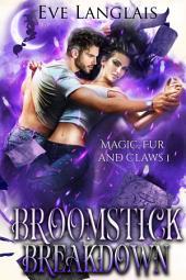 Broomstick Breakdown: Witch/Werewolf Romance