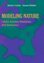 Modeling Nature