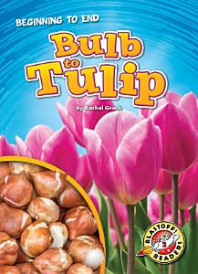 Bulb to Tulip PDF