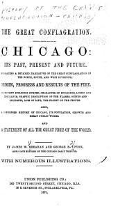 Chicago: Its Past, Present and Future: Embracing a Detailed Narrative of the Great Conflagration in the North, South and West Divisions ... Also, a Condensed History of Chicago, Its Population, Growth and Great Public Works ...