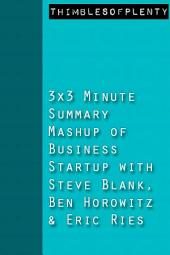 3x3 Minute Summary Mashup of Business Startup with Steve Blank, Ben Horowitz and Eric Ries