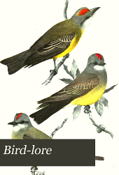 Bird-lore: An Illustrated Bi-monthly Magazine Devoted to the Study and Protection of Birds ... Official Organ of the Audubon Societies ..., Volume 10