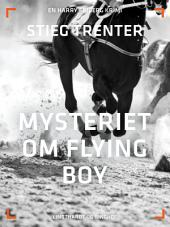 Mysteriet om Flying Boy