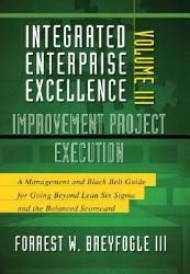 Improvement Project Execution Book PDF