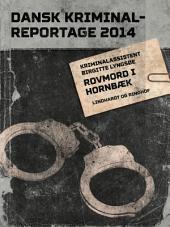 Rovmord i Hornbæk