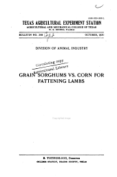 Grain sorghum vs. corn for fattening lambs