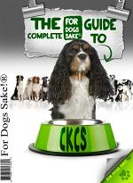 The Complete Guide to Cavalier King Charles Spaniel