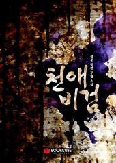 천애비검 4 - 상