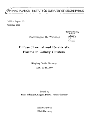 Proceedings of the Workshop Diffuse Thermal and Relativistic Plasma in Galaxy Clusters