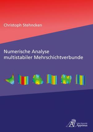 Numerische Analyse multistabiler Mehrschichtverbunde PDF