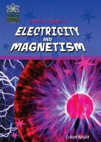 A Project Guide to Electricity and Magnetism PDF