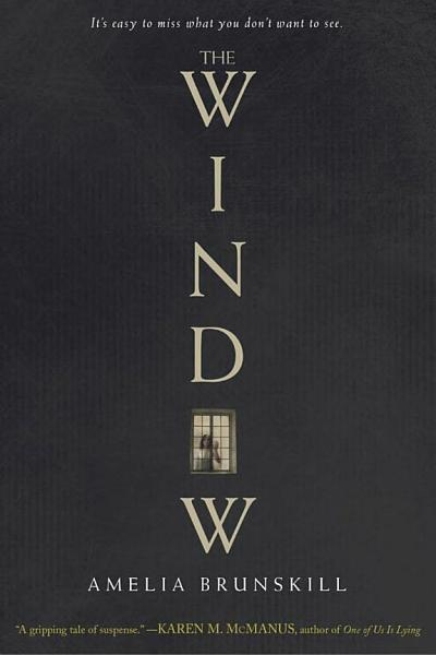Download The Window Book
