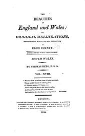 The beauties of England and Wales: or, Delineations, topographical, historical, and descriptive, of each county, Volume 25