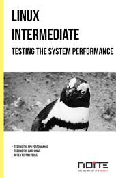 Testing the system performance: Linux Intermediate. AL2-069