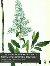 Abbildung der deutschen holzarten für forstmäner und liebhaber der botanik