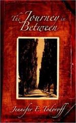 The Journey in Between