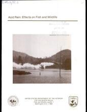 Acid Rain PDF