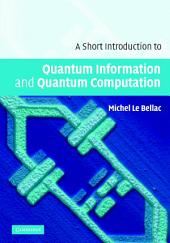 A Short Introduction to Quantum Information and Quantum Computation