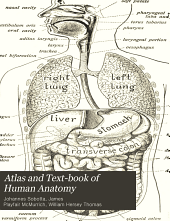 Atlas and Text-book of Human Anatomy: The viscera, including the heart