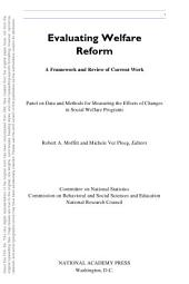 Evaluating Welfare Reform: A Framework and Review of Current Work, Interim Report