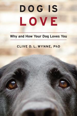 Dog Is Love PDF