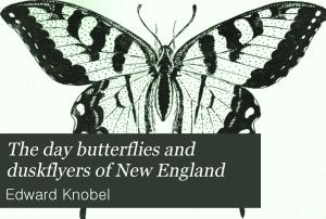 The Day Butterflies and Duskflyers of New England PDF