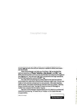 The Log Analyst PDF