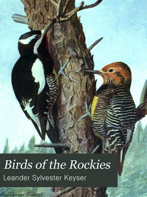 Birds of the Rockies  with a Complete Check list of Colorado Birds PDF