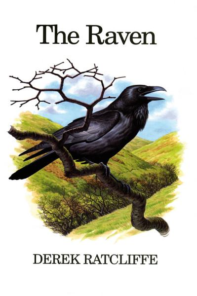 Download The Raven Book