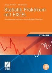 Statistik-Praktikum mit Excel: Grundlegende quantitative Analysen realistischer Wirtschaftsdaten mit vollständigen Lösungen