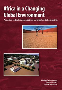 Africa in a Changing Global Environment PDF